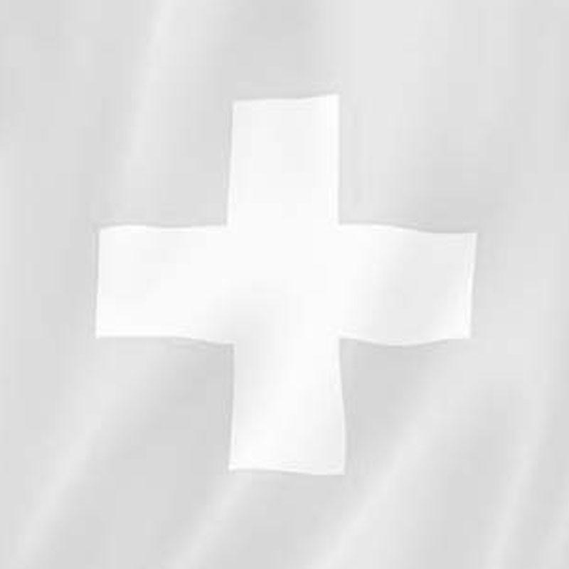 Kantonsfahne geflammt Basel-Landschaft